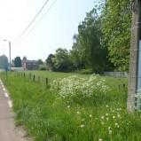 Tessenderlo : Bouwgronden Open Bebouwing