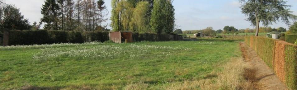 Meerhout : landelijk gelegen bouwgrond